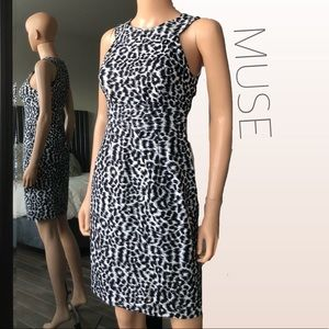 MUSE Black & White Halter Dress